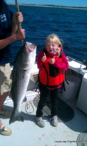 tube and worm cape cod fishing charters