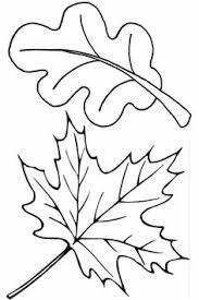 leaf coloring 13 printable coloring kids adults