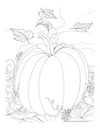 thanksgiving pumpkins coloring pages thanksgiving pumpkin coloring page png