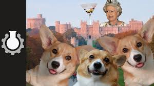 The Queen S Corgi The True Cost Of The Royal Family Explained Youtube