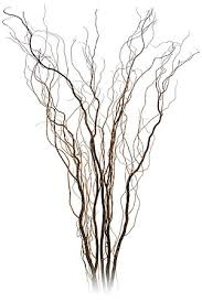curly willow centerpieces vancouver curly willow branches centerpieces for rental in langley