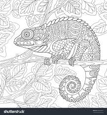 zentangle chameleon sitting on a tree branch coloring page i