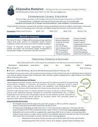 marketing executive resume international marketing director resume mattbruns me