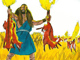 free bible images samson shows his strength against the