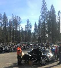 anyone in nevada county looking to build an affordable cabin sized nevada county food and toy run success nevada county fairgrounds