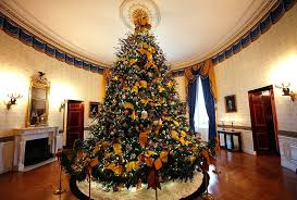 the five most popular christmas trees u2022 arbor day blog