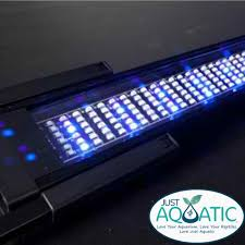 Fluval Sea Marine And Reef Led Strip Lights by Fluval Sea Marine U0026 Reef Performance Led Light Unit 60 85cm 25w