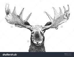 animal face sketch original black and white hand drawn pen art