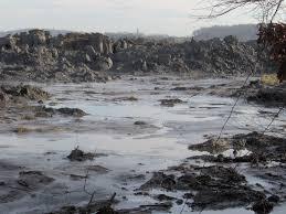 toxic heavy metal wikipedia
