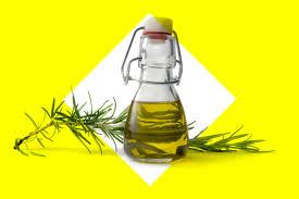home remedies for fleas reader u0027s digest reader u0027s digest