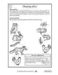 1st grade 2nd grade kindergarten science worksheets what does