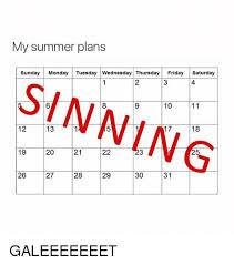 Saturday Memes 18 - my summer plans sunday monday tuesday wednesday thursday friday