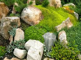 rocks in garden design alpine rock garden design