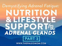 ernährung bei nebennierenschwäche demystifying adrenal fatigue pt 3 nutrition lifestyle support