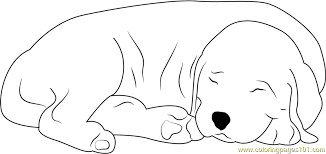 sleeping dog coloring free dog coloring pages