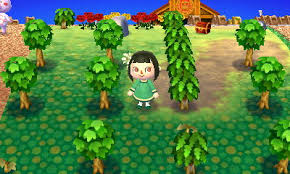 acnl shrubs problem with tree bush placement