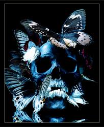 47 best butterflies and skulls images on butterflies