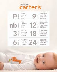 best 25 baby size chart ideas on pregnancy fruit