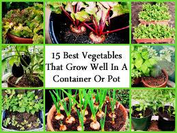 Kitchen Gardening Ideas Small Space Herb Garden Ideas Garden Design Ideas