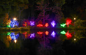 winter lights 2017 wellfield botanic gardens