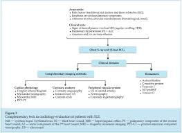 Testing Report Sle by Ijcs Systemic Lupus Erythematosus Review Of Cardiovascular Aspects
