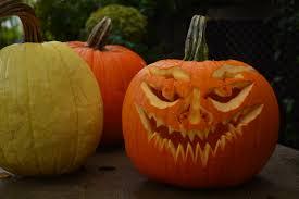 Halloween Pumpkin Origin Pumpkins And Gourds Dirt Simple