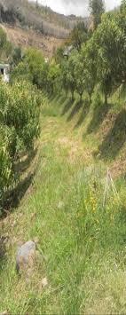 op a chambre d agriculture quelles valorisations pour une mangue sans insecticide pdf
