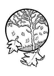 des feuilles tombées une à une d u0027un arbre en automne à colorier