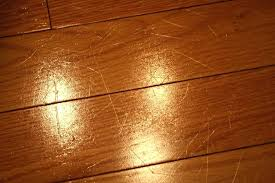 Best Flooring With Dogs Best Flooring For Pets Image Of Stranded Bamboo Flooring Dogs