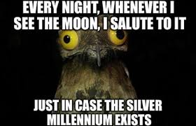 Potoo Bird Meme - pretty potoo bird meme wallpaper site wallpaper site