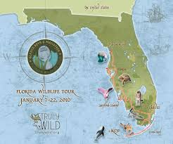 Florida Shipwrecks Map Truly Wild Tours Glades Keys U0026 Manatees Florida Wildlife Truly