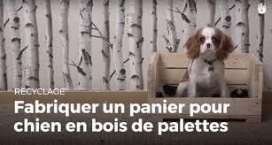 canapé lit pour chien fabriquer un panier à chien en bois de palette recycler