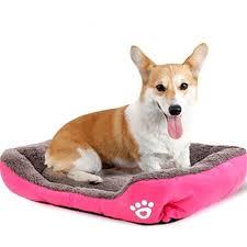 canapé lit pour chien omgo canapé lit pour chien douillet panier maison pour chiot