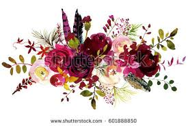burgundy flowers burgundy stock images royalty free images vectors