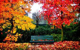 imagenes de otoño para fondo de escritorio bellas imágenes de paisajes otoñales para fondos de pantalla de pc o