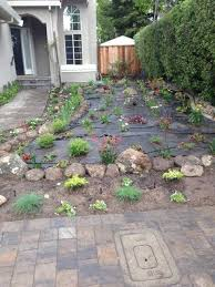 Drought Friendly Landscaping by Drought Tolerant Landscaping Landscaping Bay Area