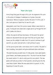 comprehensions for grade 3 ages 7 9 worksheets passage 15