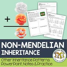 non mendelian inheritance students learning and teaching biology