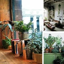 garden appealing home interior and indoor garden decoration using