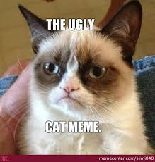 Ugly Cat Meme - the ugly cat by recyclebin meme center