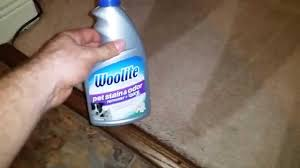 Woolite Upholstery Cleaner Woolite Pet Stain And Odor Remover Plus Oxy Carpet Cleaning Youtube