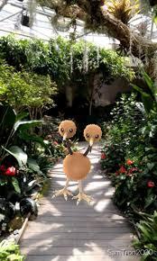 San Antonio Botanical Gardens Events Go At The Garden In San Antonio At San Antonio Botanical