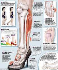 Top Foot Anatomy Oh My Safety Boots Are Killing Me But They Are Top Of The Line