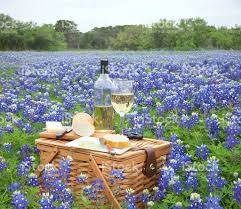 Wine Picnic Baskets Picnic Basket Wine Cheese And Bread In Bluebonnet Field Stock