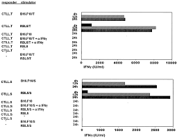t cell mediated ifn γ facilitated rejection of murine b16
