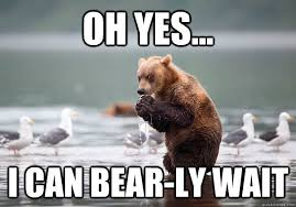 Yes We Can Meme - oh yes i can bear ly wait evil plotting bear quickmeme