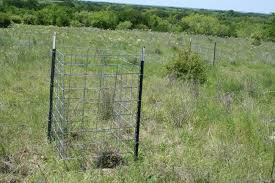 grassland native plants new native grassland monitoring management publication announced