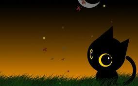 halloween background eyes screenheaven cute cartoon kitten huge eyes sitting on grass high