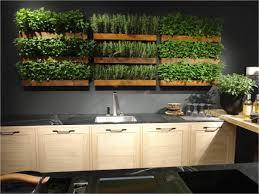 indoor kitchen garden ideas best 25 kitchen herb gardens ideas on kitchen herbs