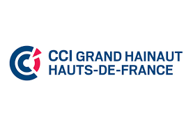radiation chambre de commerce cci grand hainaut cci territoriale du grand hainaut